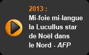 Mi-foie mi-langue, la Lucullus star de Noël dans le Nord - AFP